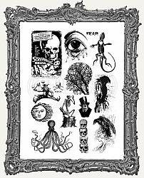 Creative Expressions Mixed Media Transfers By Andy Skinner - Pack of 2 - Curiosities