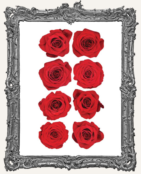 Red Roses Sticko Photo Flower Stickers