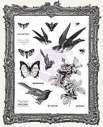 Finnabair Cling Mount Stamp Set - Wild and Free