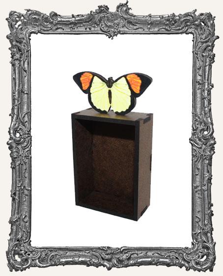 Butterfly Box Mini Shrine Kit - Style 6