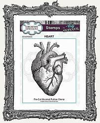 Creative Expressions Cling Mounted Rubber Stamp by Andy Skinner - Anatomical Heart