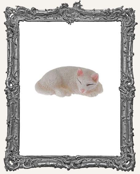 Miniature White Cat Sleeping