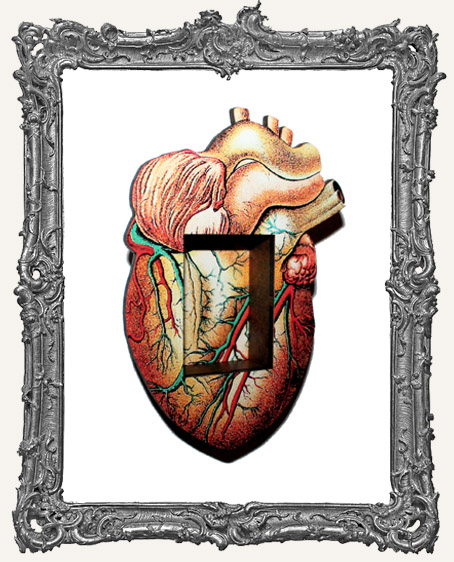 Anatomy Shrine Kit - Heart