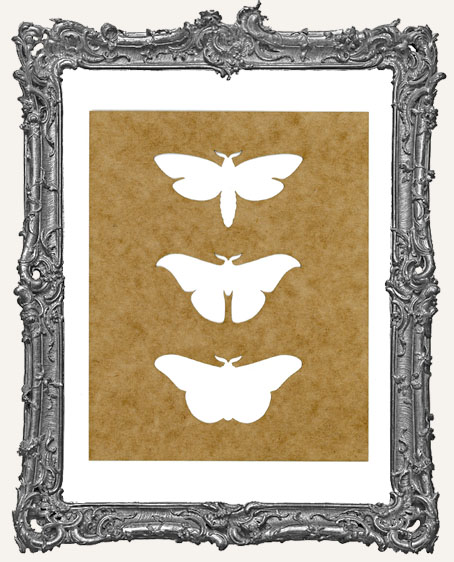 SMALL Moth Trio Stencil
