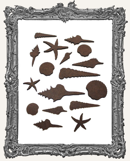 Sea Shell Mix Cut-Outs - 17 Pieces