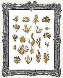 MINI Chipboard Coral and Seaweed Cut-Outs - 21 Pieces