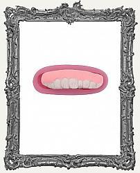 Small Pink Silicone Mold - Anatomy Mold - Teeth