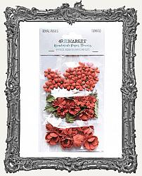 49 And Market Royal Posies Paper Flowers 49 Pieces - Tomato