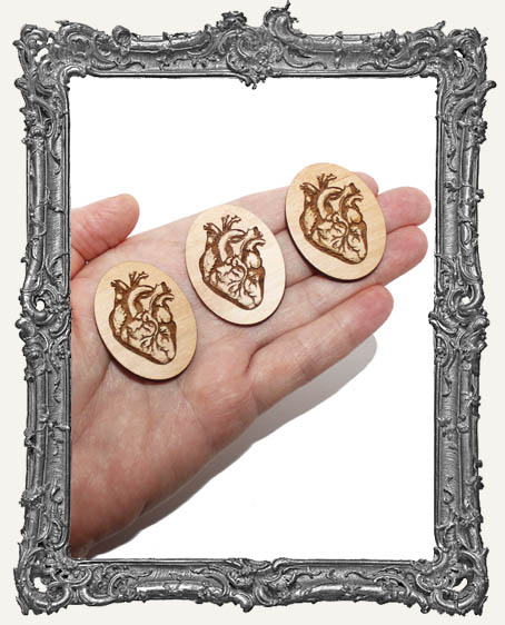 Anatomical Heart Engraved Wood Cameos - Set of 3