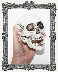 Large Plastic Skull with Hinged Jaw