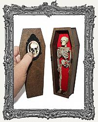 3-D Coffin Shrine Kit - Limited Edition Deluxe Kit