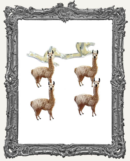 Drama Llama Brads - 12 Piece
