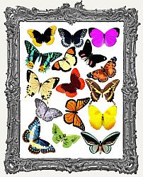 16 Butterfly Paper Cuts Set II