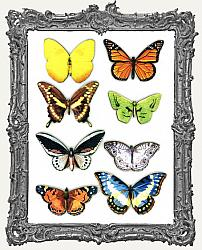 Butterfly Masonite Cut-Outs - 8 Pieces - Set II