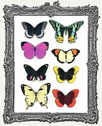 Butterfly Masonite Cut-Outs - 8 Pieces - Set I