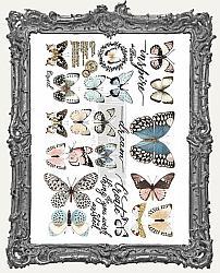 Prima Marketing Re-Design Small Decor Transfers - Papillon Collection