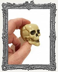 Small Plastic 3D Skull - 1 Piece