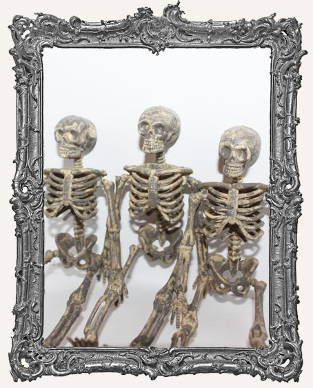 Plastic Graveyard Skeleton