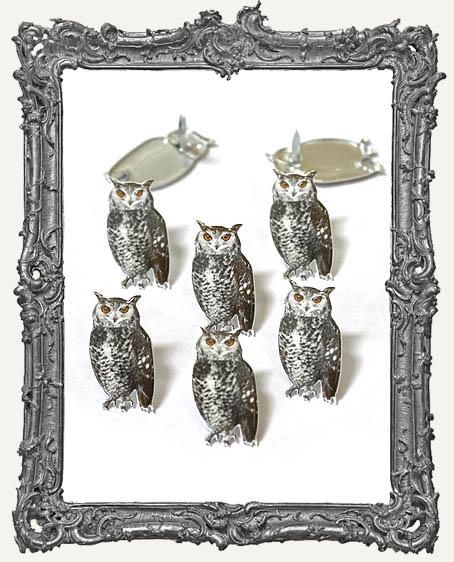 Sketch Owl Brads - 12 Piece