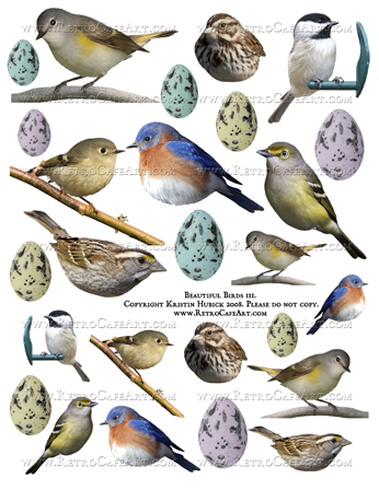 Beautiful Birds 3 Collage Sheet