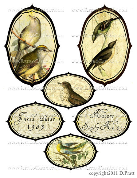 Bird Labels Collage Sheet by Debrina Pratt - DP291