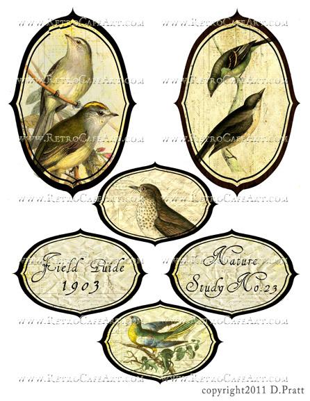 Bird Labels Collage Sheet by Debrina Pratt - DP291