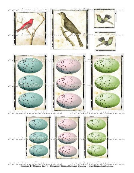 Birds and Eggs Collage Sheet by Debrina Pratt - DP337
