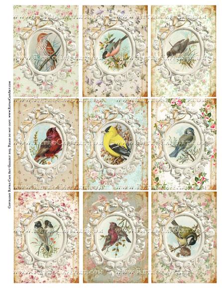 Ornate Framed Vintage Birds ATC Size Collage Sheet - SC29