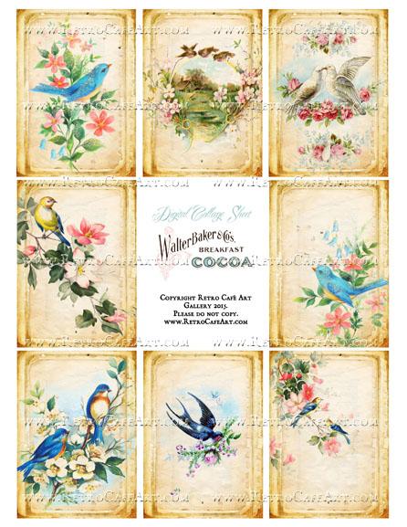 Antique Birds Vintage ATC Size Collage Sheet - SC46