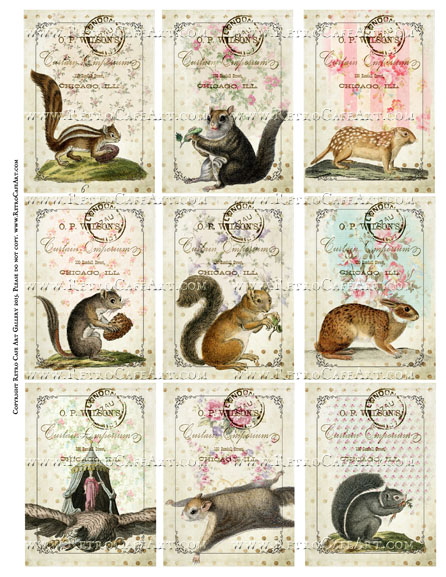 Antique Squirrels And Friends ATC Size Collage Sheet - SC73