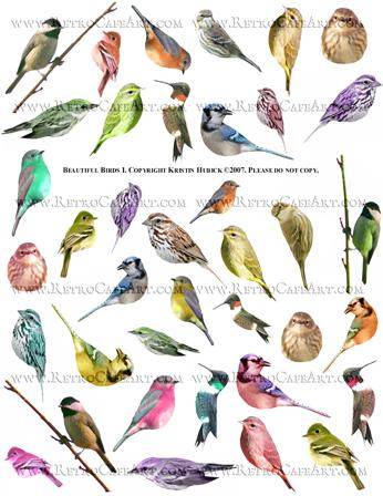 Beautiful Birds 1 Collage Sheet