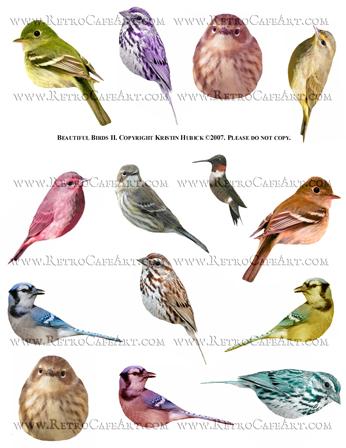 Beautiful Birds 2 Collage Sheet