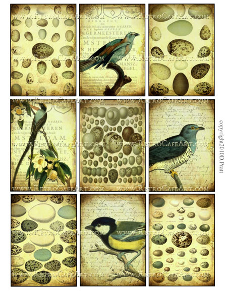 ATC Size Vintage Birds and Eggs Collage Sheet by Debrina Pratt - DP128