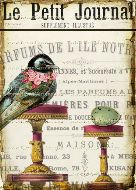 5 x 7 Le Petit Journal Bird Egg Image by Debrina Pratt - DP177