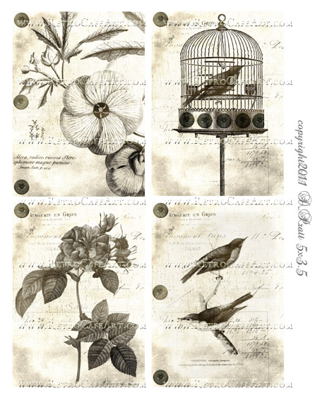 Birds and Blooms Collage Sheet by Debrina Pratt - DP251