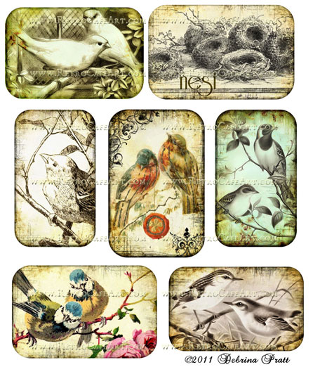 Bird Love Collage Sheet by Debrina Pratt - DP49