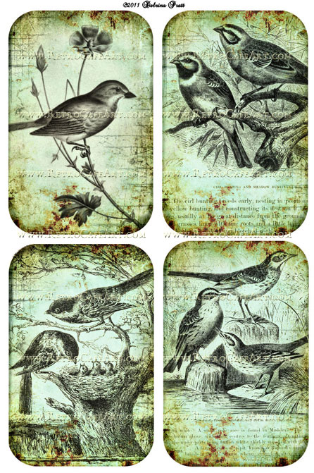 Blue Birds Collage Sheet by Debrina Pratt - DP51