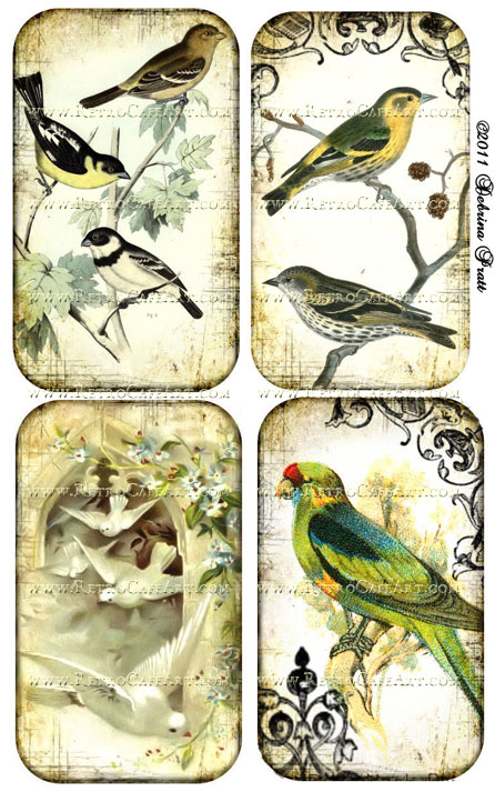 Vintage Birds Collage Sheet by Debrina Pratt - DP87