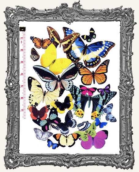 24 Butterfly Paper Cuts Set I