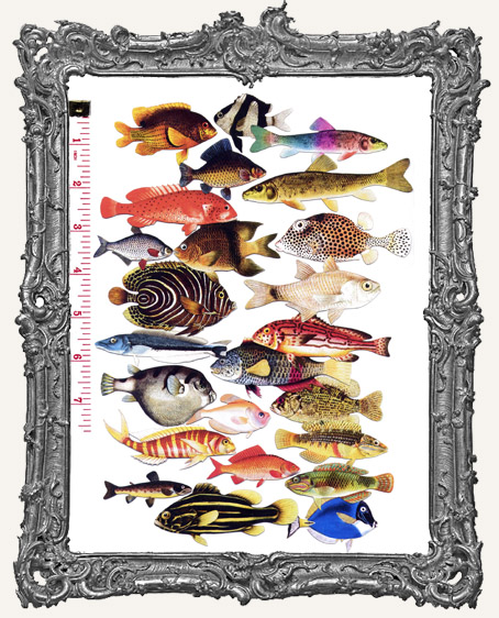 24 Fish Paper Cuts