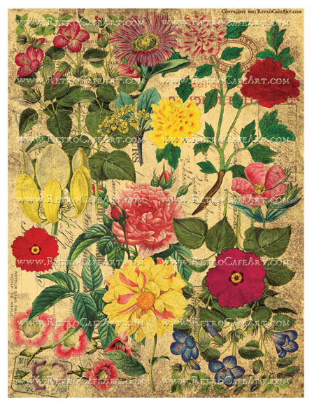 Wild Flower Background Collage Sheet - Vintage Coffee Stained